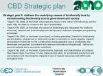 cbd strategic plan