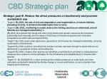cbd strategic plan1