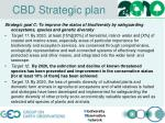 cbd strategic plan2