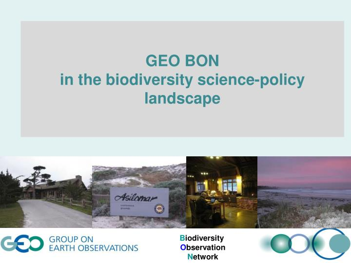 Geo bon in the biodiversity science policy landscape