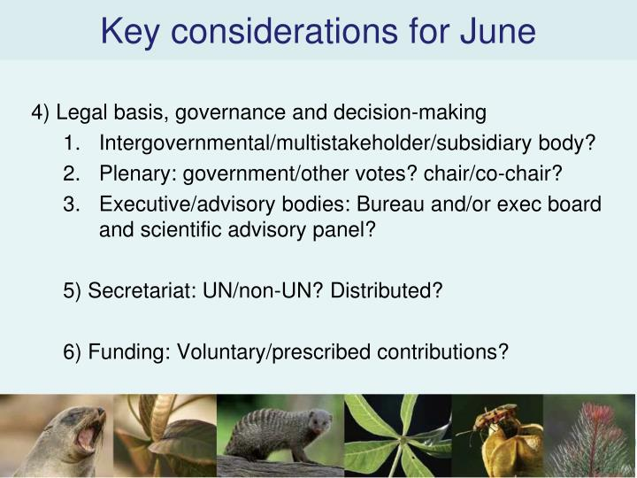 Key considerations for June