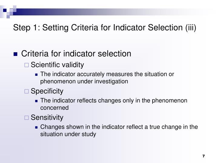 Step 1: Setting Criteria for Indicator Selection (iii)