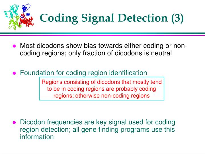 Coding Signal Detection (3)