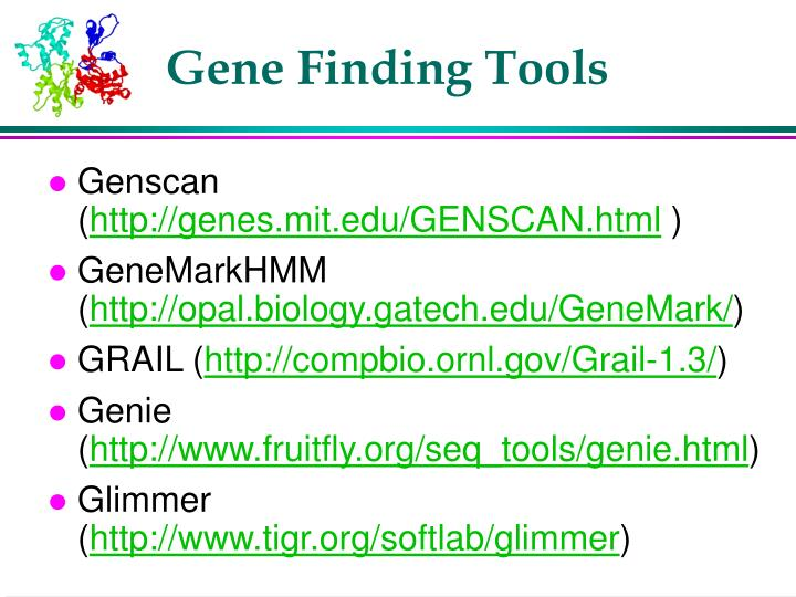 Gene Finding Tools
