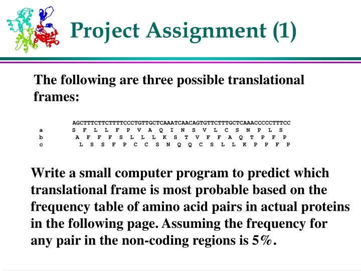 Project Assignment (1)