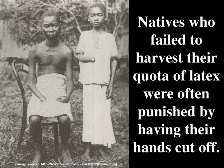 Natives who failed to harvest their quota of latex were often punished by having their hands cut off.