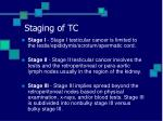 staging of tc