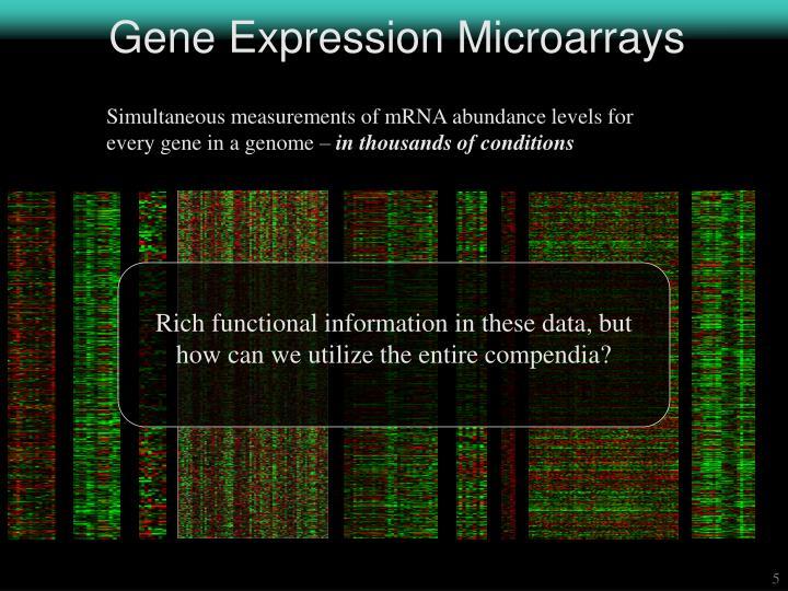 Gene Expression Microarrays
