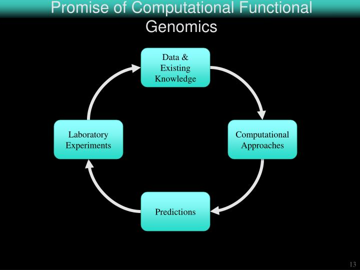 Promise of Computational Functional Genomics
