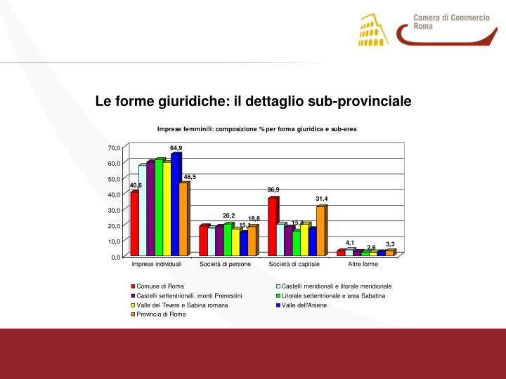 Le forme giuridiche: il dettaglio sub-provinciale