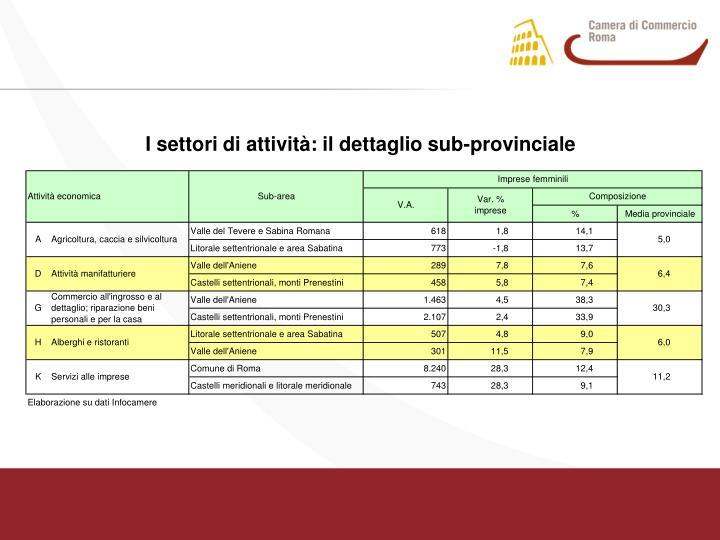 I settori di attività: il dettaglio sub-provinciale