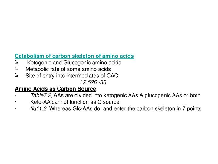 Catabolism of carbon skeleton of amino acids