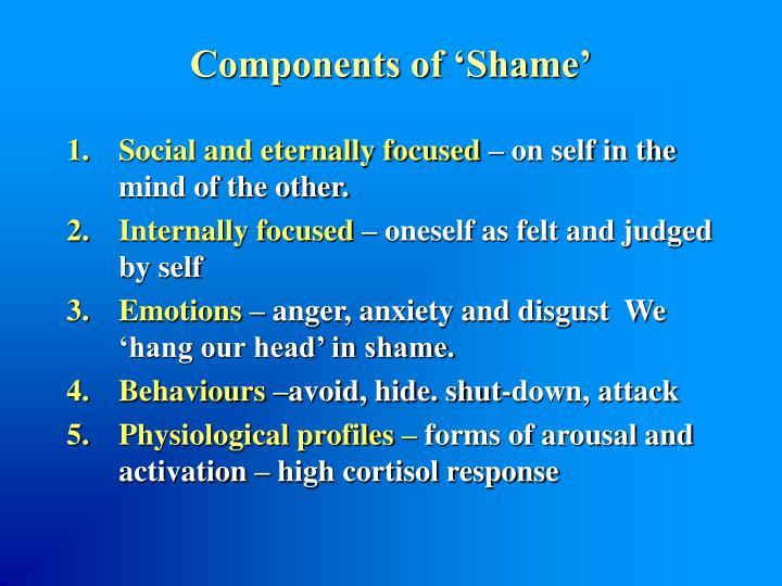Components of 'Shame'