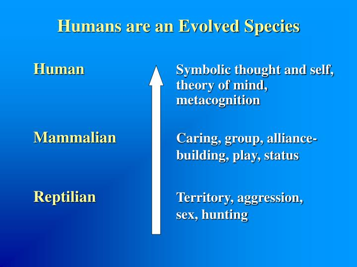 Humans are an Evolved Species