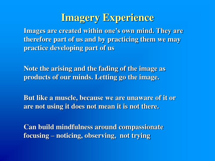 Imagery Experience