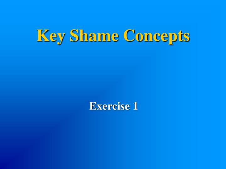 Key Shame Concepts