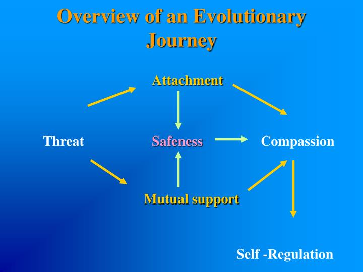 Overview of an Evolutionary