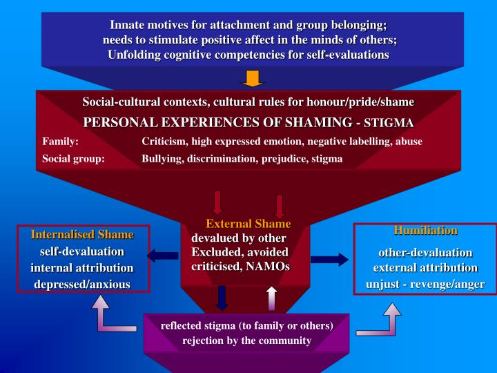 Innate motives for attachment and group belonging;