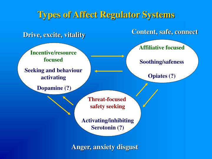 Types of Affect Regulator Systems