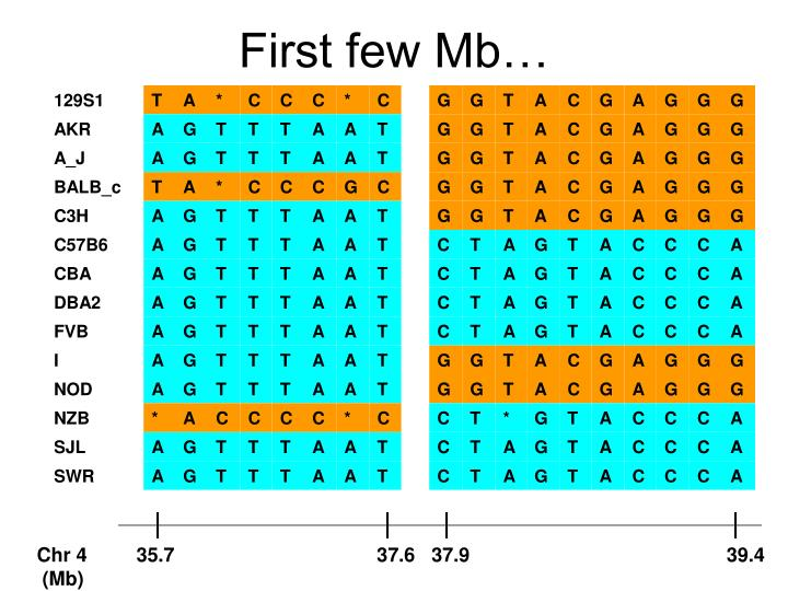 First few Mb…