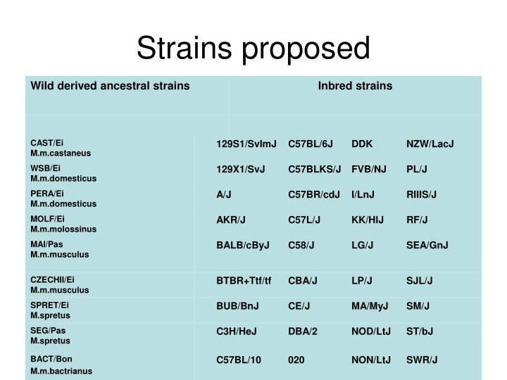 Strains proposed
