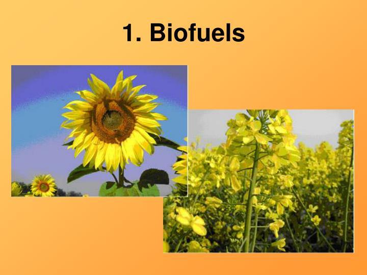 1. Biofuels
