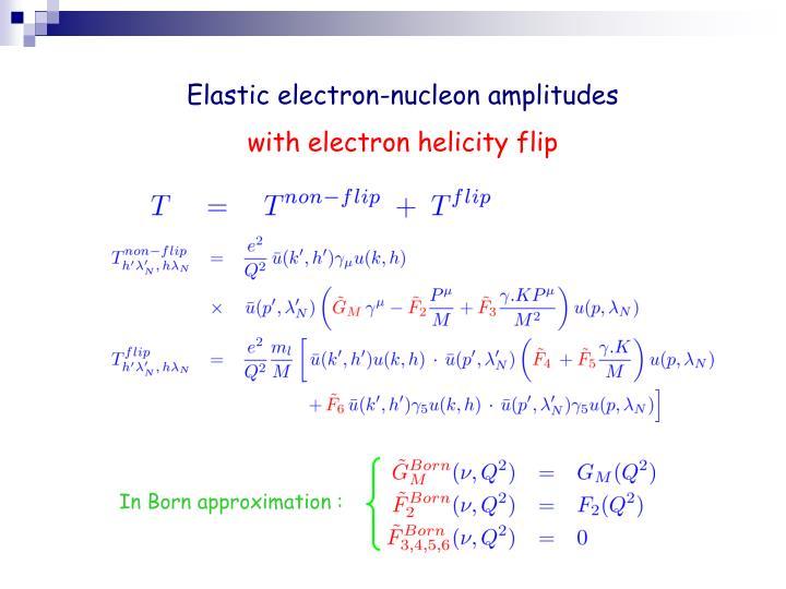 Elastic electron-nucleon amplitudes