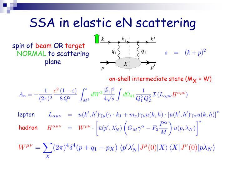 SSA in elastic eN scattering