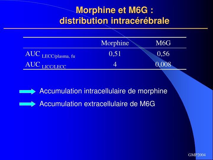 Morphine et M6G :