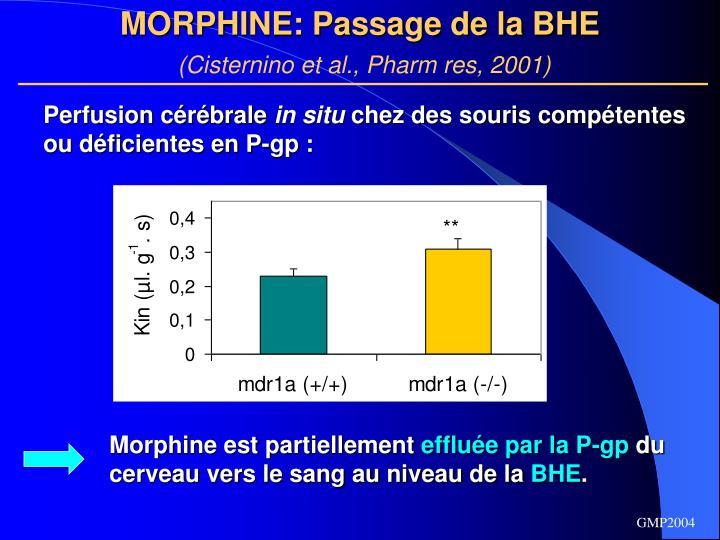 MORPHINE: Passage de la BHE