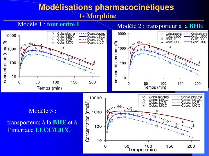 Modélisations pharmacocinétiques