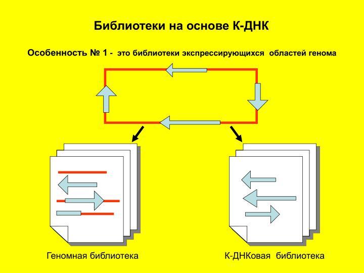 Библиотеки на основе К-ДНК