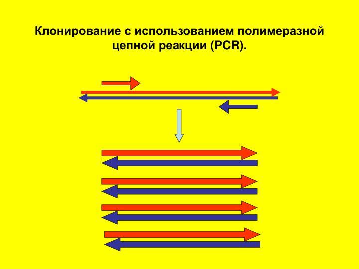 Клонирование с использованием полимеразной цепной реакции