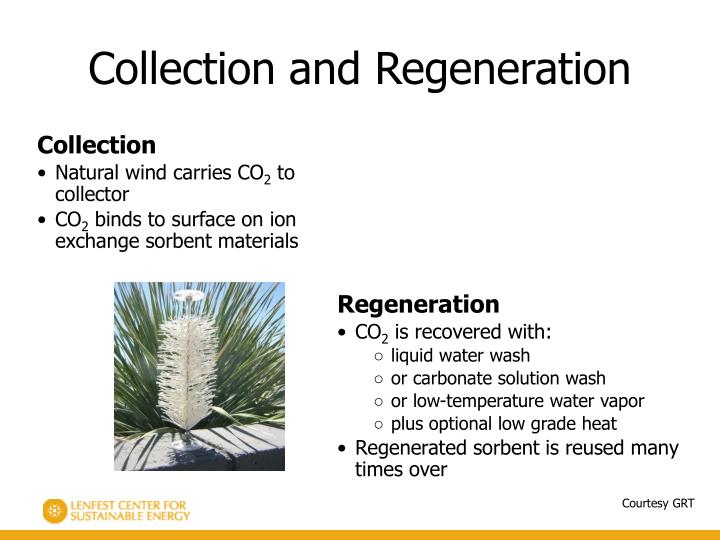 Collection and Regeneration