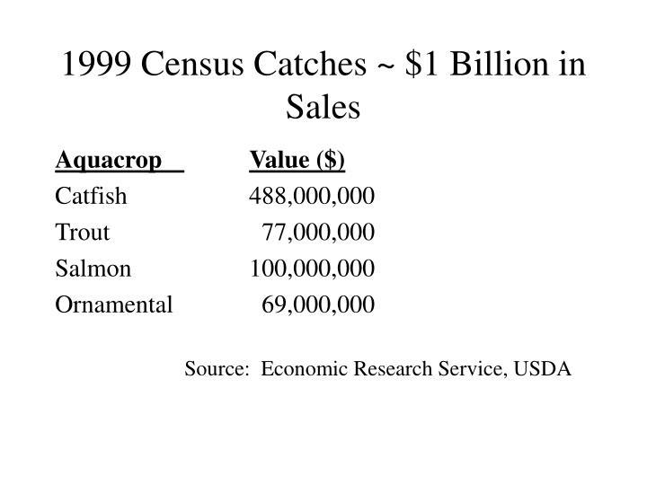 1999 Census Catches ~ $1 Billion in Sales