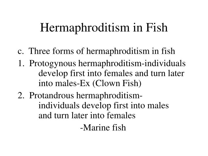Hermaphroditism in Fish