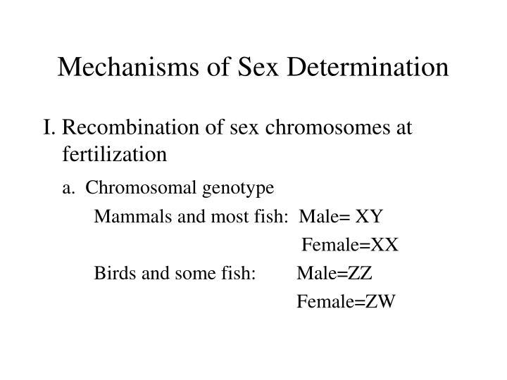 Mechanisms of Sex Determination