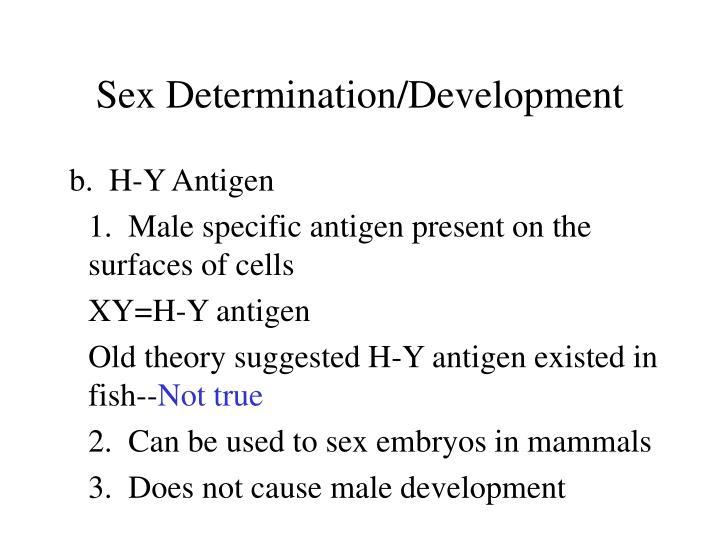 Sex Determination/Development