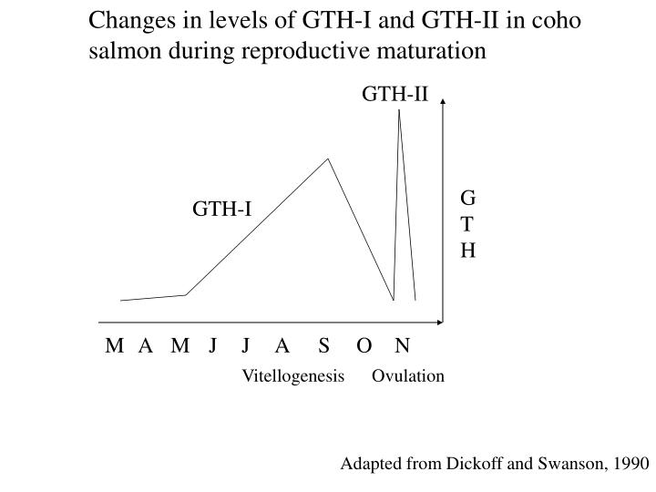 Changes in levels of GTH-I and GTH-II in coho salmon during reproductive maturation