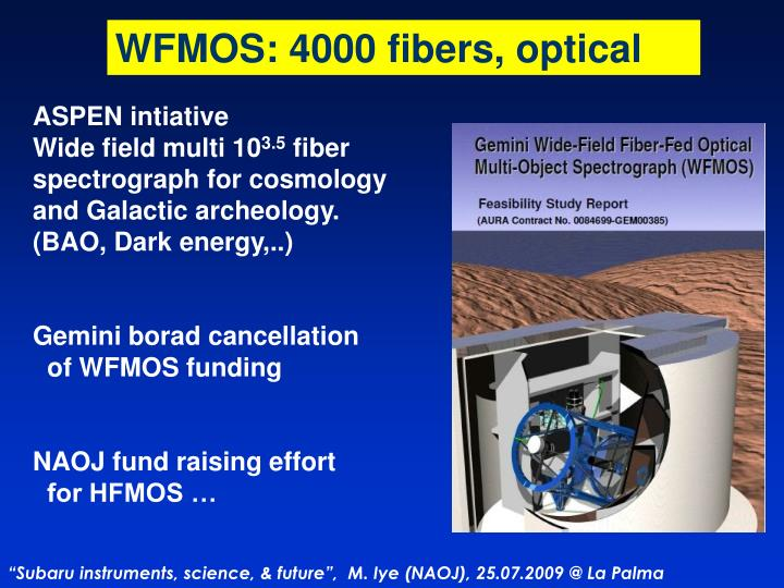 WFMOS: 4000 fibers, optical