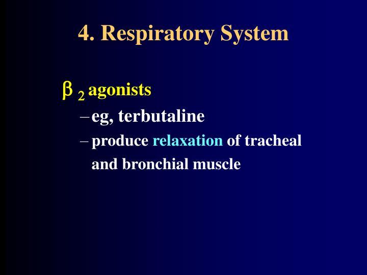 4. Respiratory System