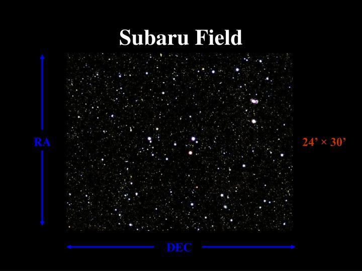 Subaru Field