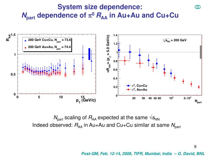 System size dependence:
