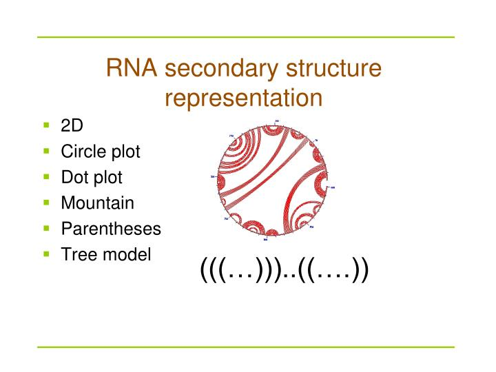 RNA secondary structure representation