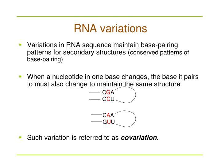 RNA variations