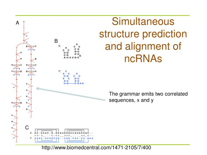 Simultaneous structure prediction and alignment of ncRNAs