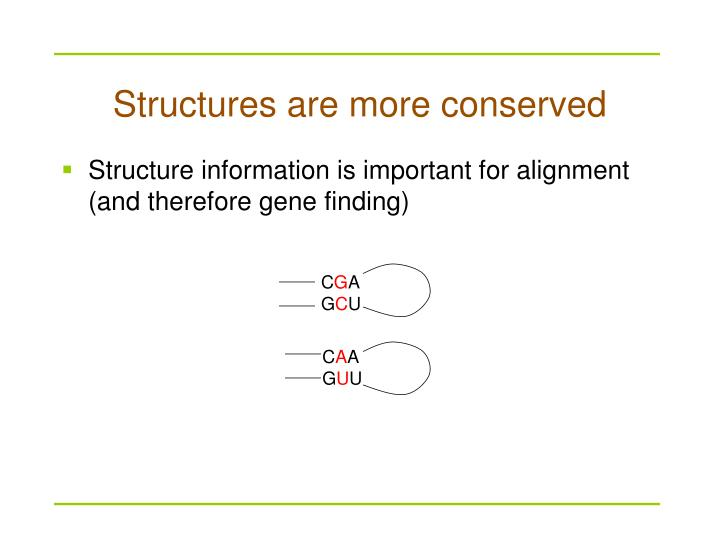 Structures are more conserved