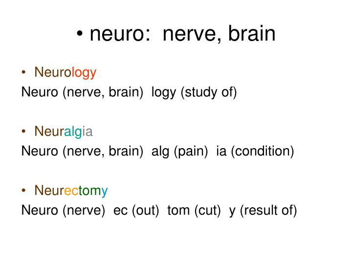 neuro:  nerve, brain