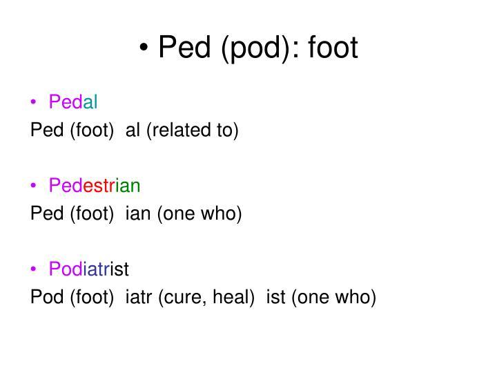 Ped (pod): foot