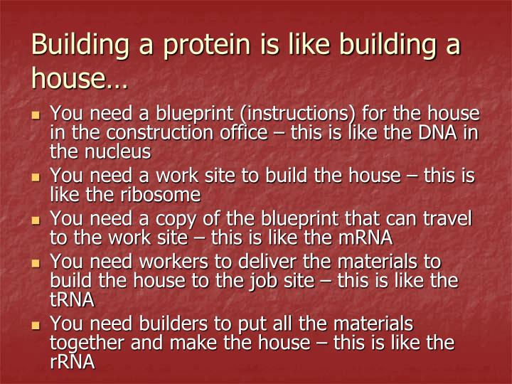 Building a protein is like building a house…